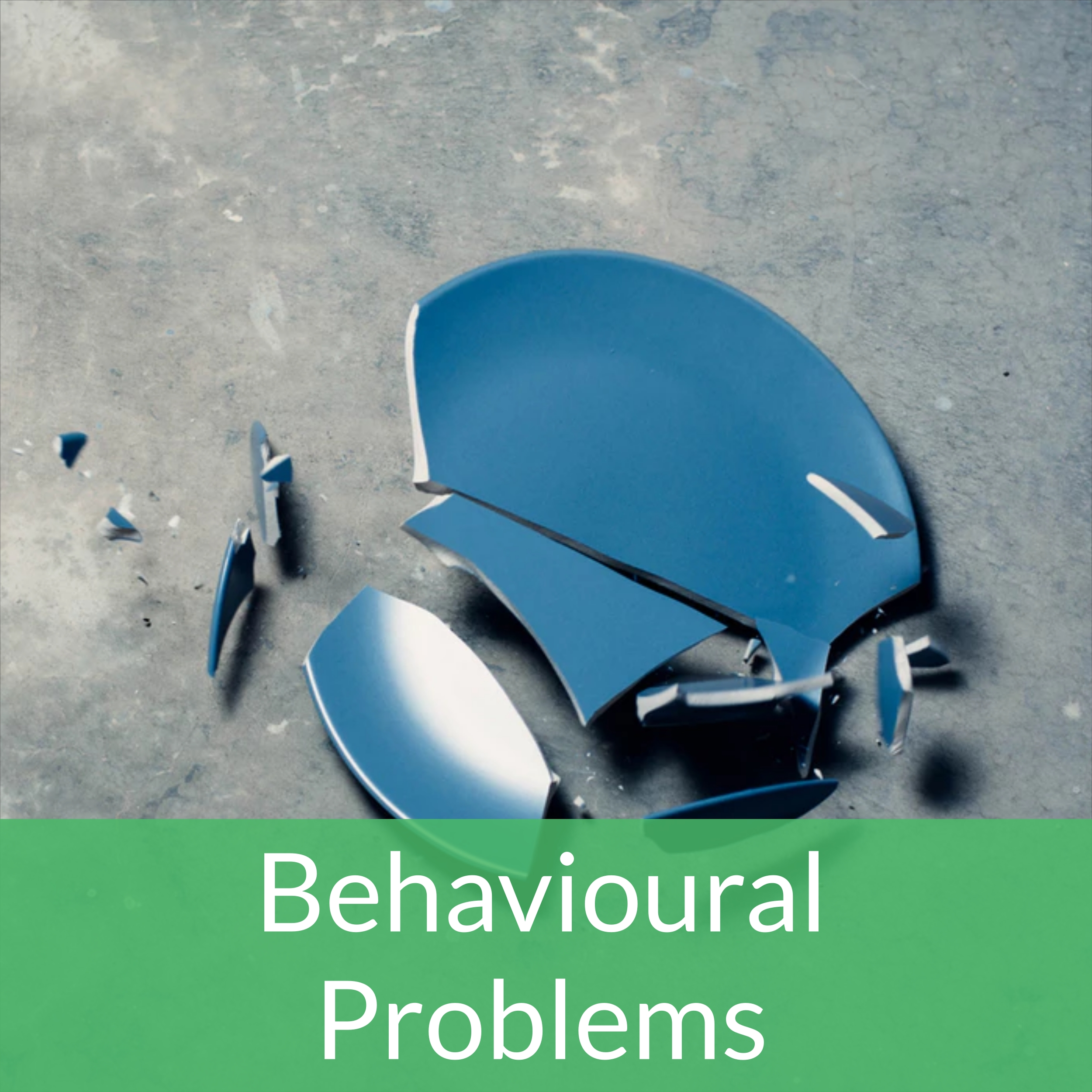 banner-behavioural1